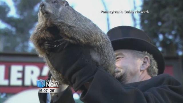 Punxsutawney Phil Sees His Shadow