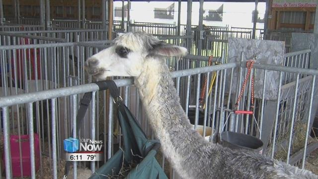 The Mercer County Fair runs through August 17th.