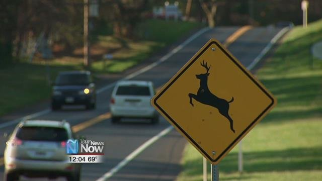 Keep an eye out for deer crossing signs as they give a historical warning of where deer have crossed in the past.
