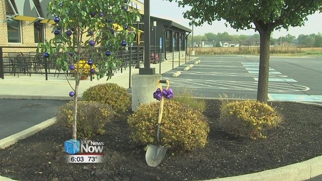 As of Monday, a new tree stands in front of the Buffalo Wild Wings on Allentown Road as a way to bring awareness to the community.