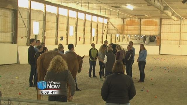 This is the second year the group has worked with the horses at Fassett Farm.