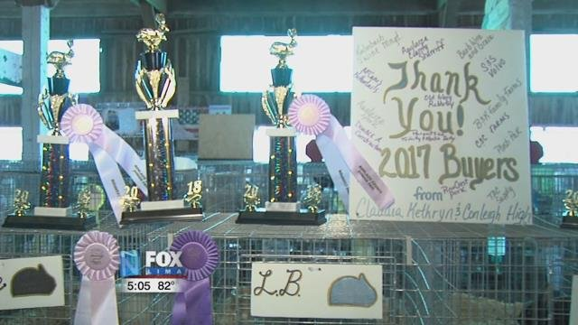 This year at the Auglaize County Fair, the sisters brought home quite a few awards.