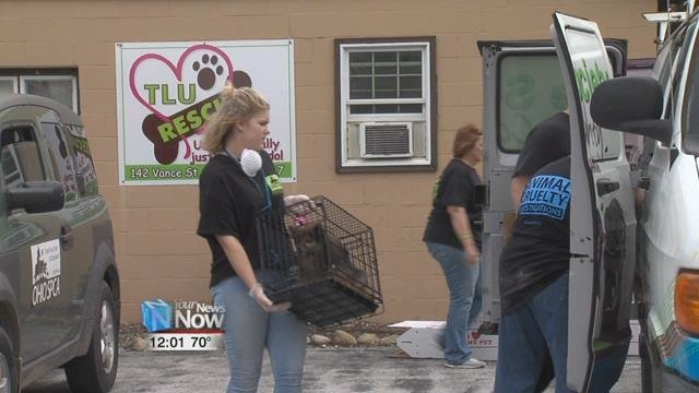 Animals were removed from a rescue in Bluffton