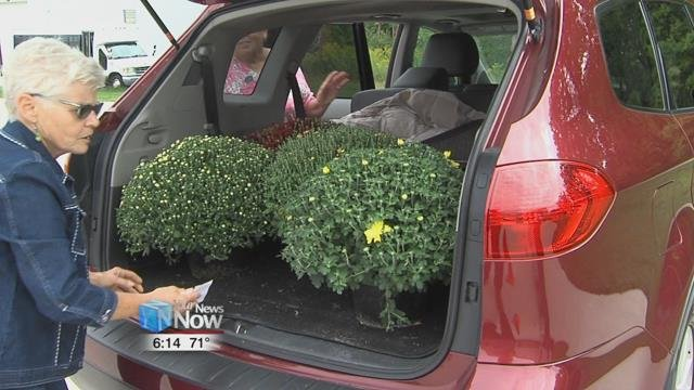 Wednesday more than 900 hardy mums found new homes as part of the annual Friends of the Lima Symphony Mum Sale.